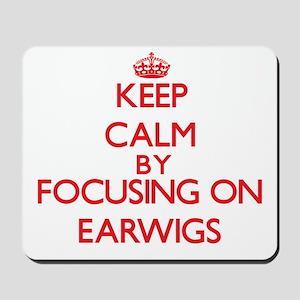 Keep Calm by focusing on Earwigs Mousepad