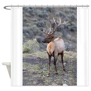 Bull Elk Shower Curtains