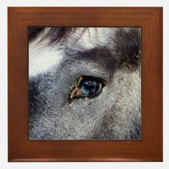 Blue Eyed Horse Framed Tile