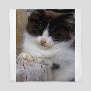 Black and White Kitten Napping Queen Duvet