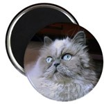 PIXEL Kitty Magnet (10 pack)