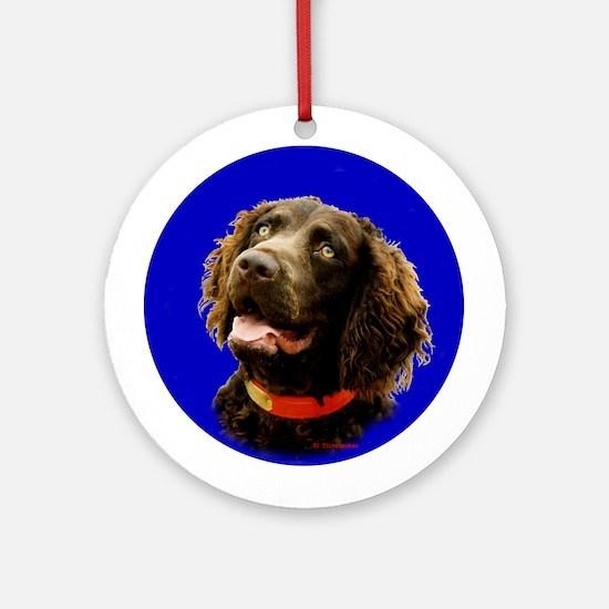 Boykin Spaniel Photo Ornament (Round)