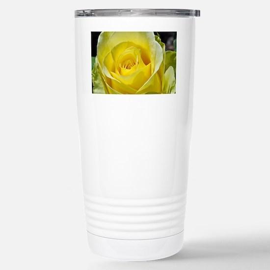 Singe yellow rose in su Stainless Steel Travel Mug