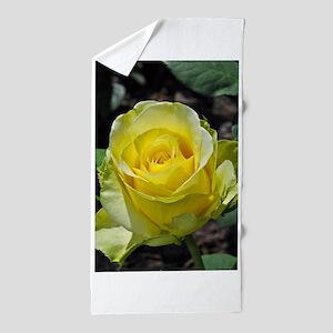 Singe yellow rose in sunlight Beach Towel