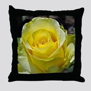 Singe yellow rose in sunlight Throw Pillow