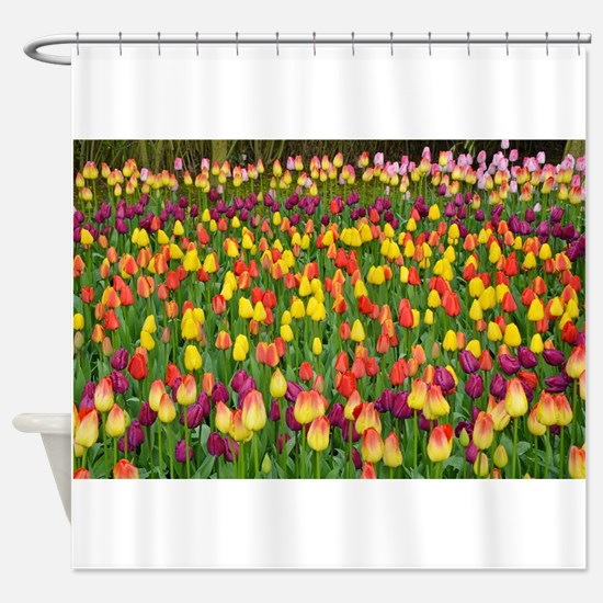 Colorful spring tulips garden Shower Curtain