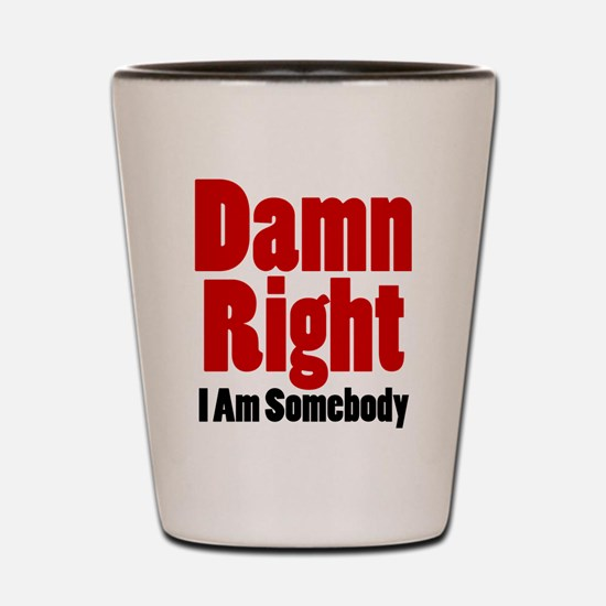 Damn Right I Am Somebody Shot Glass