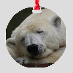 Polar bear 011 Round Ornament