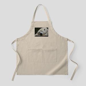 Polar bear 011 Apron