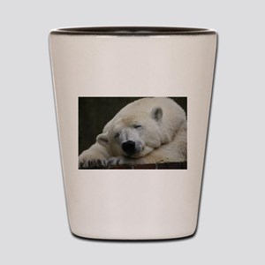 Polar bear 011 Shot Glass