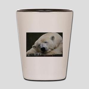 Polar bear 011 Shot Glass