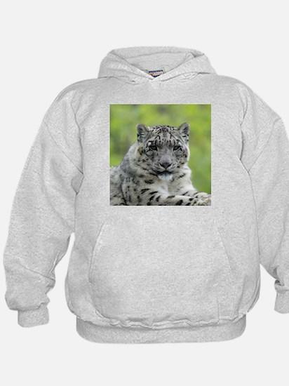 Leopard010 Hoodie