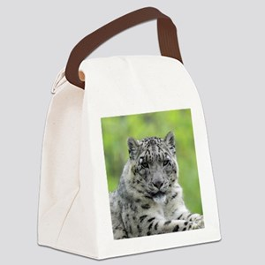 Leopard010 Canvas Lunch Bag