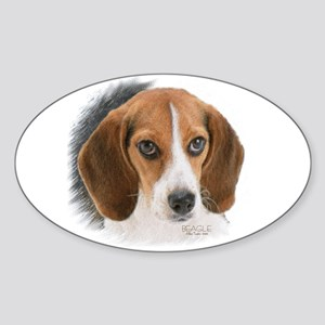 Beagle Close Up Sticker (oval)