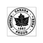 SAFE Logo 2010 v8 no CANADA Sticker
