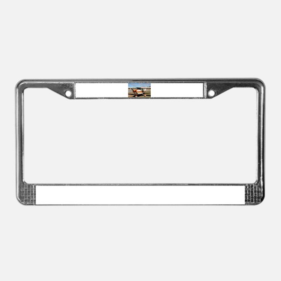 Plane: high wing License Plate Frame