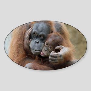 OrangUtan001 Sticker