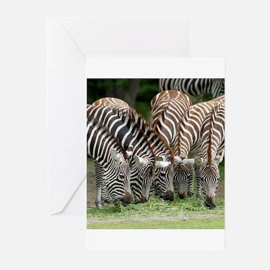 Zebra009 Greeting Cards