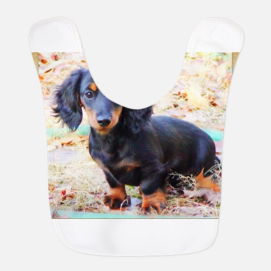 Puppy Love Doxie Bib