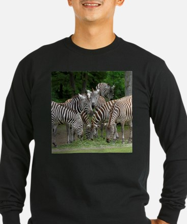 Zebra_2014_1101 Long Sleeve T-Shirt