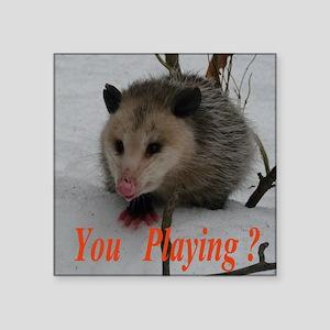 March Madness Possum Sticker