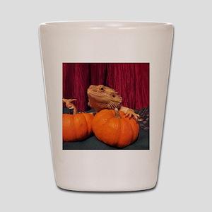 Autumn Beardie Shot Glass