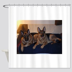German Shepard on couch Shower Curtain