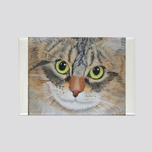 Tabby Cat Magnets