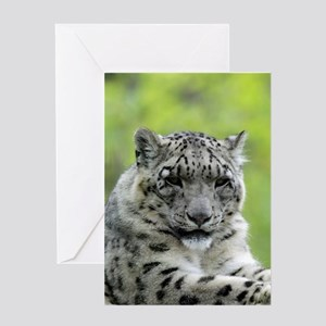 Leopard007 Greeting Cards