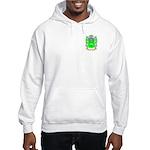 Henchy Hooded Sweatshirt