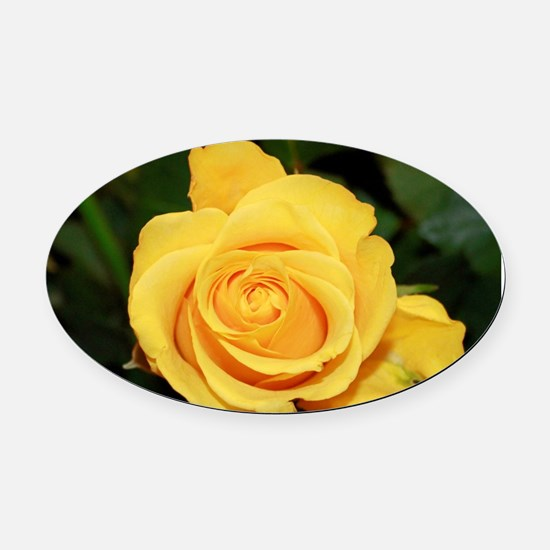 Rose yellow 001 Oval Car Magnet