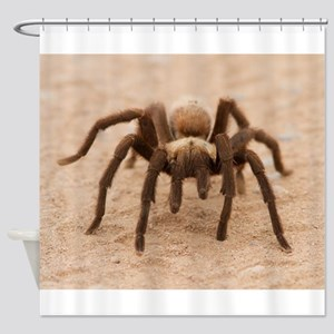 Tarantula Spider Shower Curtain