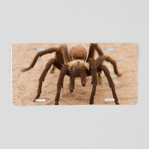 Tarantula Spider Aluminum License Plate