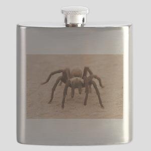 Tarantula Spider Flask