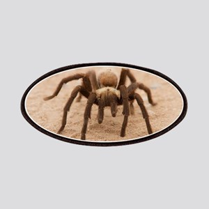 Tarantula Spider Patches