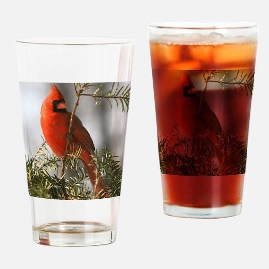 Winter Cardinal Drinking Glass