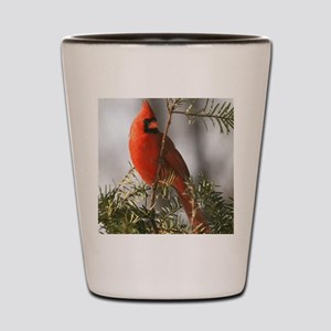 Winter Cardinal Shot Glass