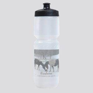 Kindness Sports Bottle