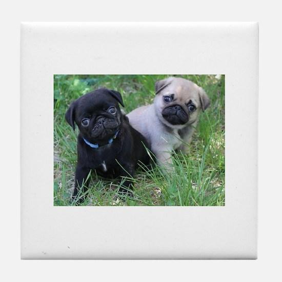 Pug Puppy Tile Coaster