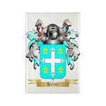 Helyer Rectangle Magnet (100 pack)
