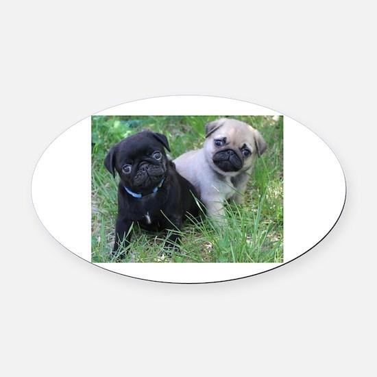 Pug Puppy Oval Car Magnet