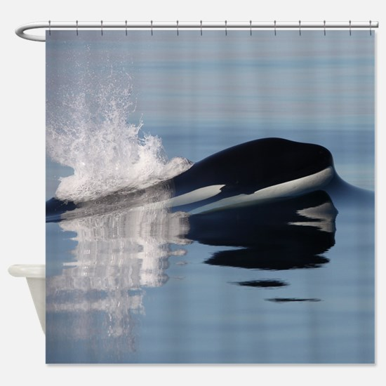 Unique Southern resident killer whales Shower Curtain