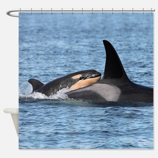 Funny Southern resident killer whales Shower Curtain