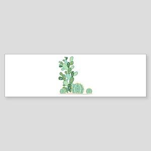 Cactus Plants Bumper Sticker