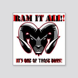 RAM_IT Sticker