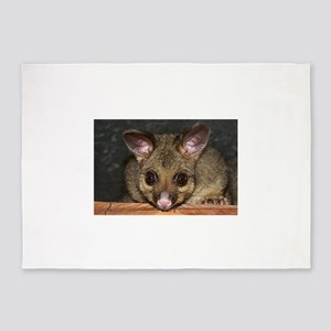 Cute Australian Possum with big eye 5'x7'Area Rug