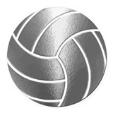 Volleyball Round Car Magnets