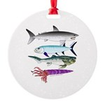 4 Extinct Sea Monsters Ornament
