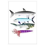 4 Extinct Sea Monsters Posters
