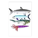 4 Extinct Sea Monsters Postcards (Package of 8)